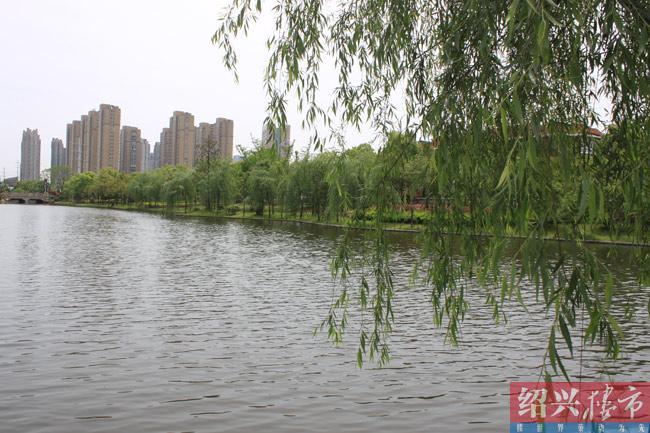 杨柳景观效果图ps素材