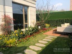 建面143㎡院墅一層花園