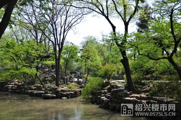 苏州・拙政园 实景图