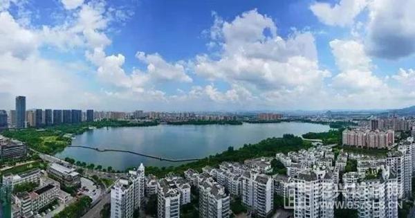 ▲瓜渚湖实景图