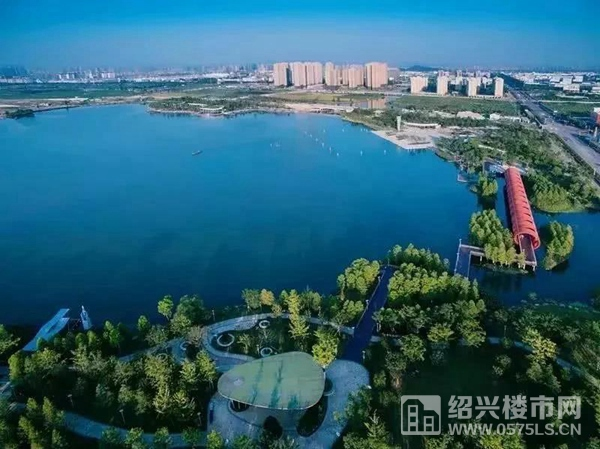 △洋涇湖公園實景(圖源:網絡)