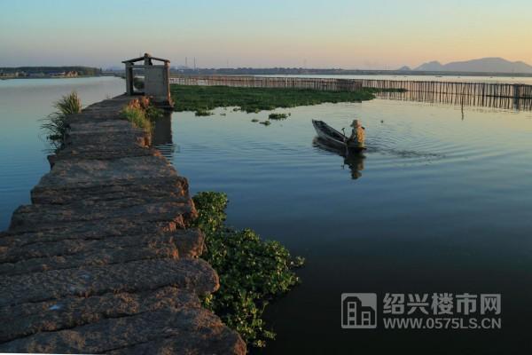 (犭央 犭茶 湖美景图)