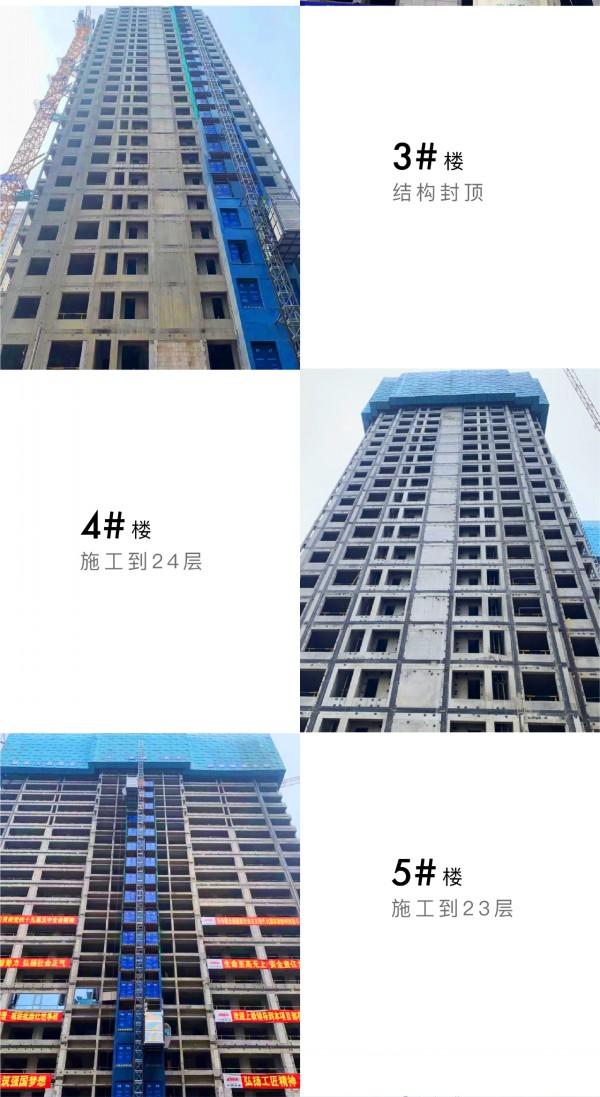芳菲徐来 至以为念丨中国铁建·花语江南4月家书  第4张