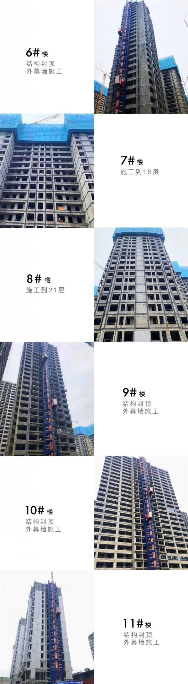 芳菲徐来 至以为念丨中国铁建·花语江南4月家书  第5张