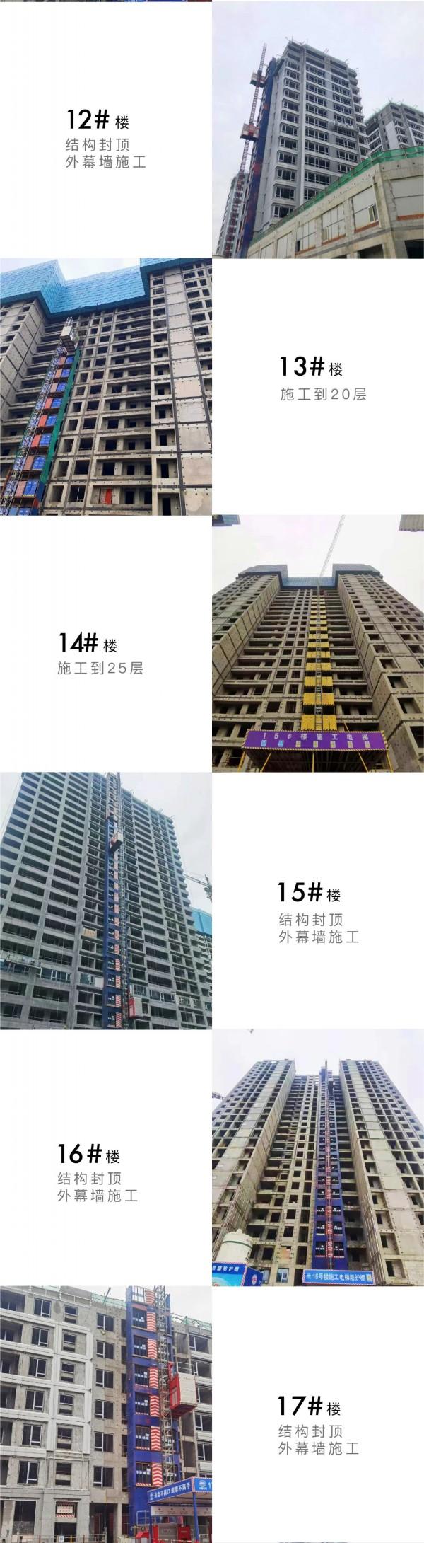 芳菲徐来 至以为念丨中国铁建·花语江南4月家书  第6张
